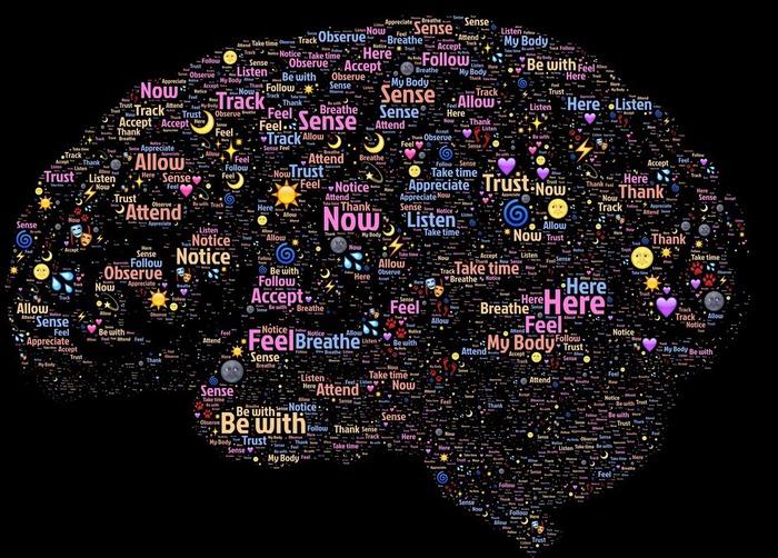 brain-998996_1920.jpg